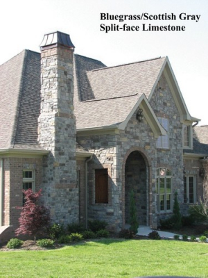 """BlueGrass/Scottish Gray Splitface Limestone • <a style=""""font-size:0.8em;"""" href=""""http://www.flickr.com/photos/40903979@N06/4231035323/"""" target=""""_blank"""">View on Flickr</a>"""